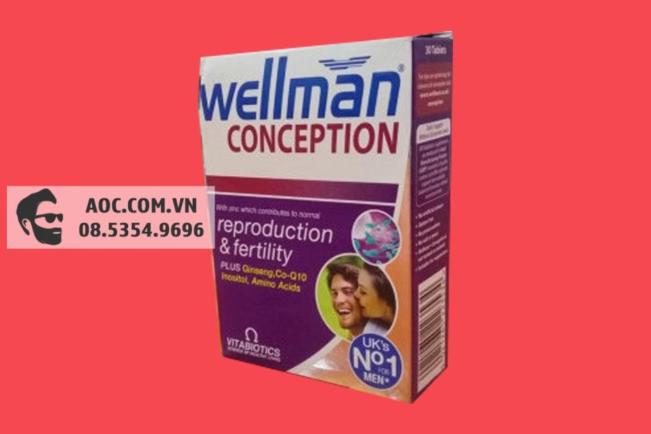 Hình ảnh hộp Wellman Conception